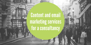 Consultancy marketing support case study