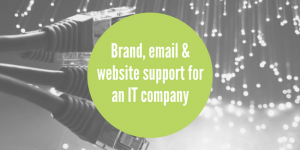 IT company marketing support case study