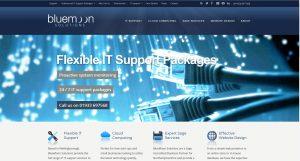 website-example-bluemoon