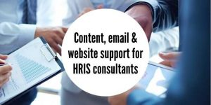 online and offline marketing support for HRIS consultancy