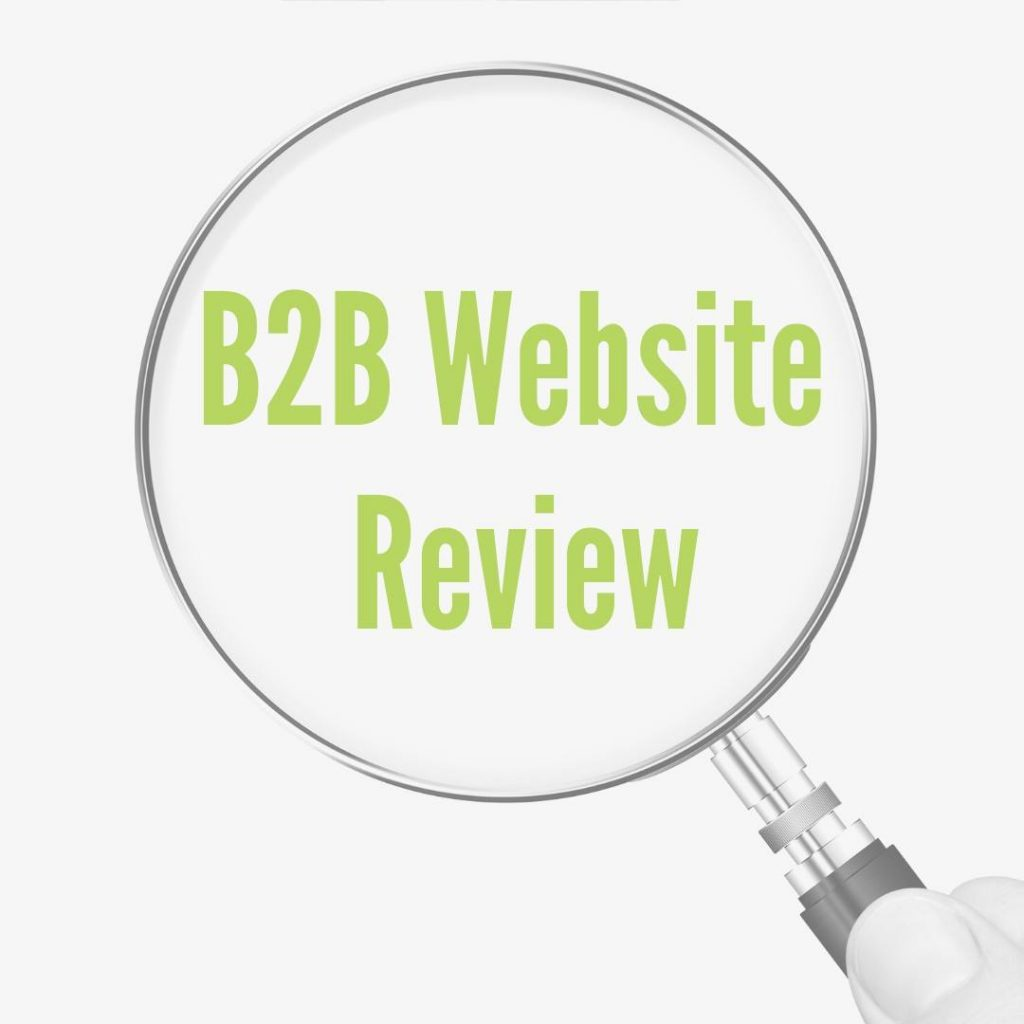 B2B website review service